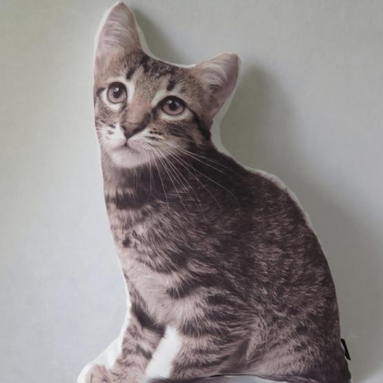 cojin gato