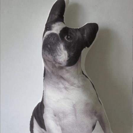 cojin perro